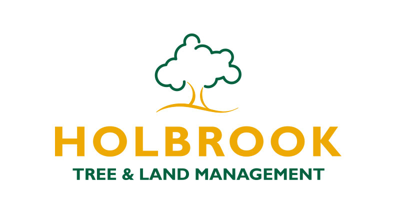 holbrook tree and land management